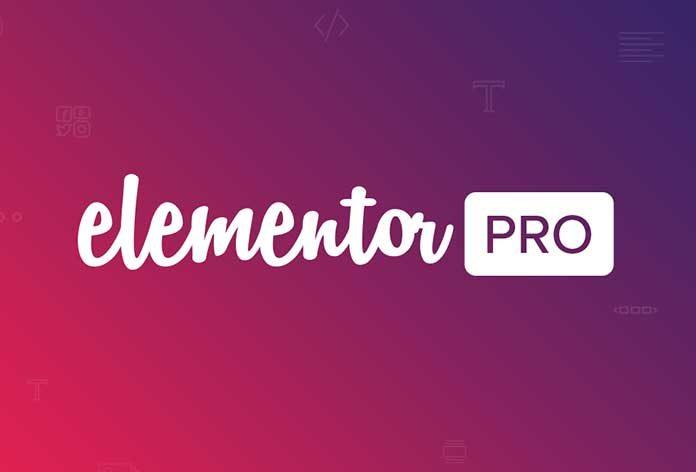 Elementor Pro 专业版汉化破解插件